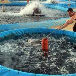 Jual Filter Air dan Kolam Terpal Ikan di Depok,Hubungi 087878202527