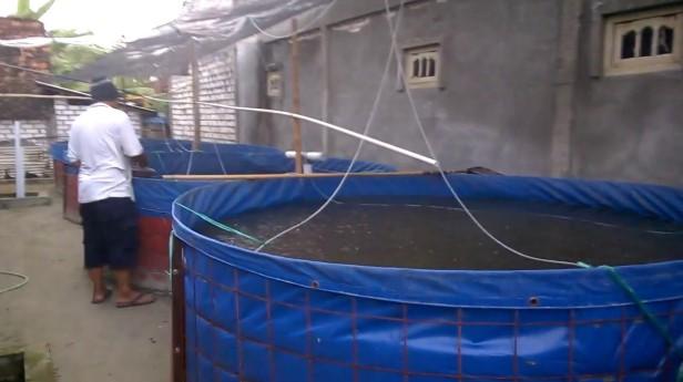 Jual Filter Air dan Kolam Terpal Ikan di Bekasi, Hubungi 087878202527