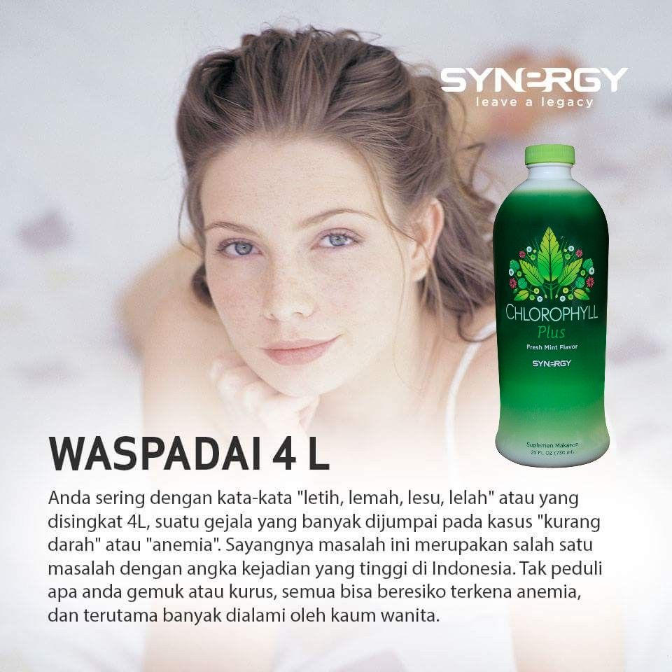 WASPADAI 4L