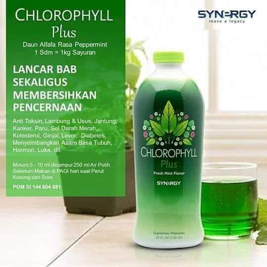 Jual Smart Detox Dari Synergy di Kota Wisata Bekasi | Hubungi 087878202527 |