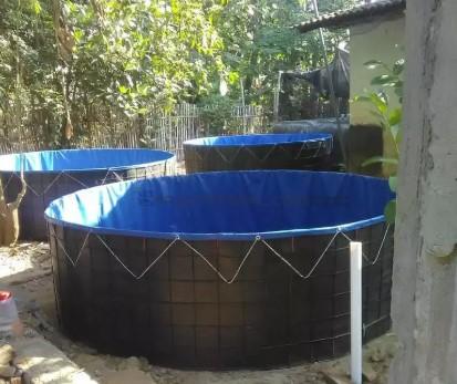 kolam lele1