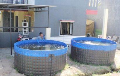kolam terpal3